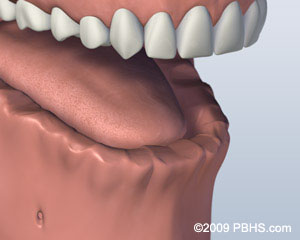 A photo of a mouth that has all teeth missing on its lower jaw